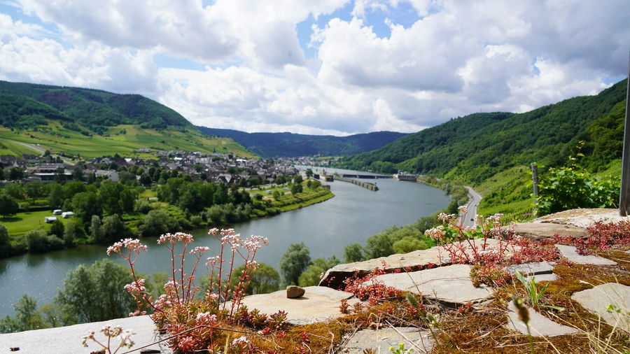 Scenic view of moselle river valley amidst trees against sky