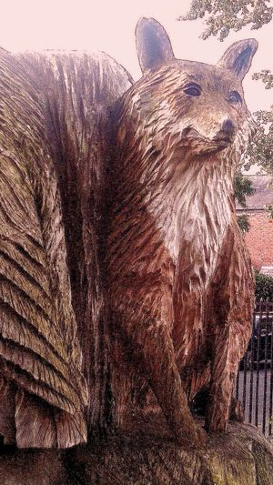 Wooden Tree Fox