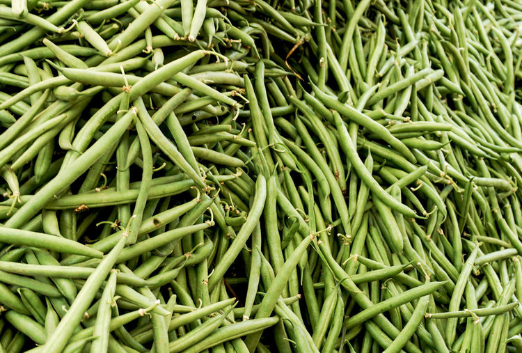 beans Green Color Food And Drink Large Group Of Objects Food Full Frame Market Wellbeing Backgrounds Freshness Healthy Eating For Sale Vegetable Retail  No People Market Stall Bean High Angle View Ripe Palermo