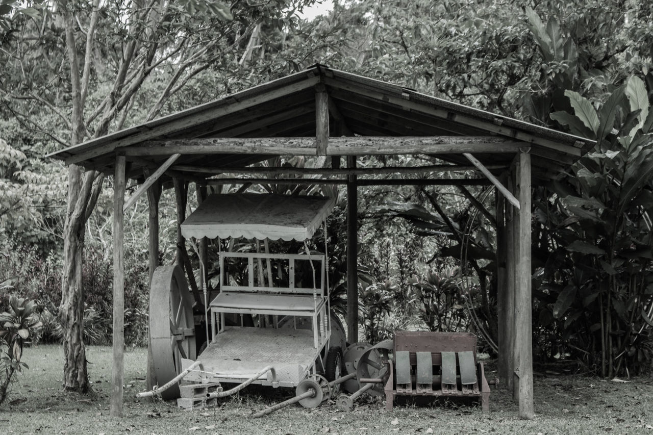 built structure, architecture, tree, wood - material, gazebo, day, outdoors, shelter, abandoned, nature, no people, tranquility, building exterior, forest