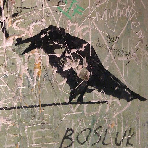 Kadikoy Karga tuvalet duvarlari... Kargabar Bar wall wallart grafitti istanbul moda color paint crow