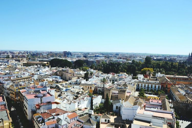 España Landscape Amazing View From The Top Of Giralda Tower Sevilla Taking Photos Travel Architecture March2015 Perfect Day