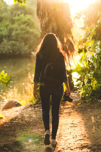 beautiful rays Nature Lost Exploring Wanderlust Happy Leading California Tree Trunk Green Color Adventure Fun Women Young Women Tree Sunlight Standing Sunset Walking Rear View Shining Sunbeam Lens Flare Silhouette Light Beam Back Lit Outline Calm Focus On Shadow Blooming Streaming