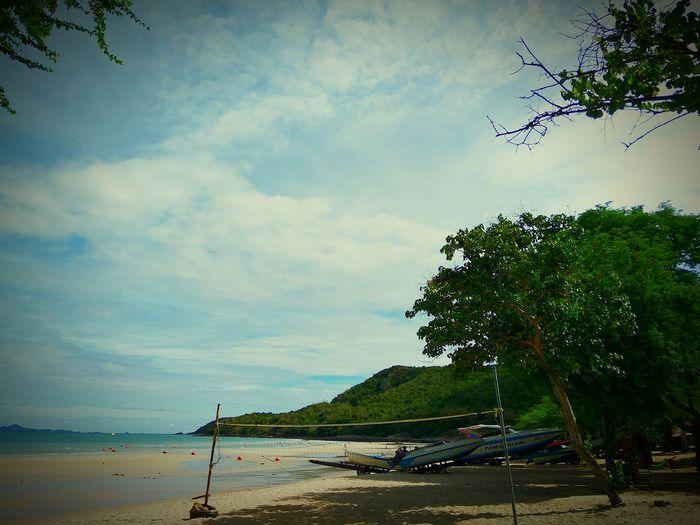 Beach Tree Cloud - Sky Sand Nature Sky Sea Outdoors Landscape Beauty In Nature