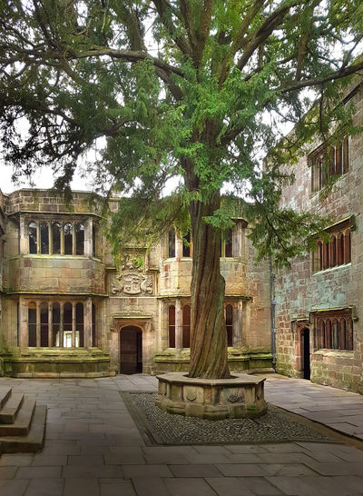 Castle Courtyard Architecture Building Exterior Built Structure Castle Day HDR History No People Outdoors Skipton Travel Destinations Tree
