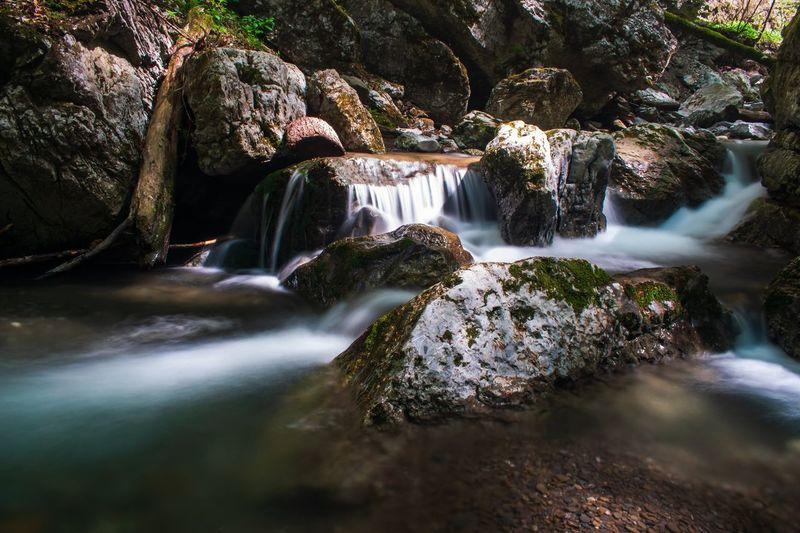 Jasle creek in the Devil's passage canyon in Croatia Water Waterfall Forest Motion River Tree Moss Rock - Object Landscape Flowing Water Stream - Flowing Water Long Exposure