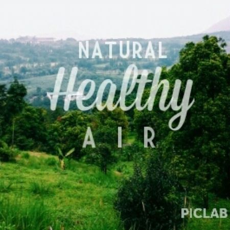 VSCO Piclab Nature