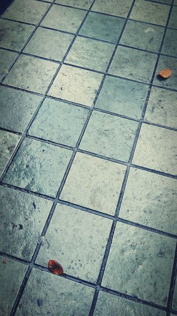 Checkers of Life... Tranquility Backgrounds Floor Checkers Checker Checkerboardpattern Life Pattern No People Backgrounds Full Frame Flooring Tiled Floor Pattern Repetition Tile Paving Stone Day Floor Footpath Outdoors Geometric Shape No People Tranquility Stone Material First Eyeem Photo