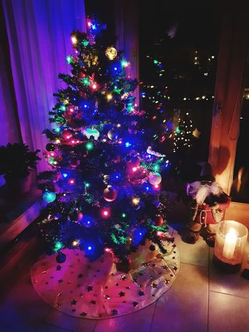 Weihnachten kann kommen Celebration Christmas Tree Indoors