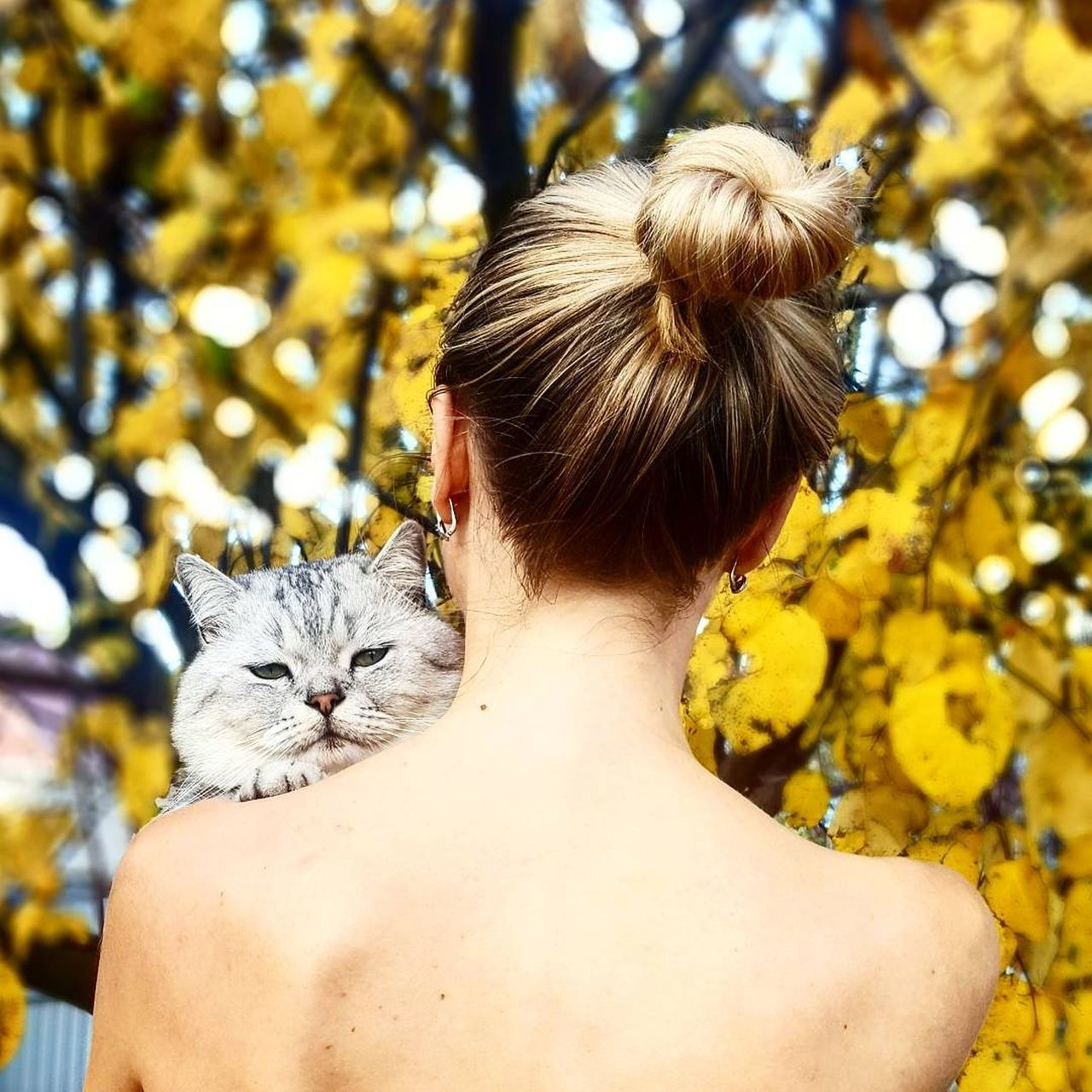rear view, pets, one animal, domestic animals, real people, domestic cat, one person, mammal, lifestyles, day, feline, sitting, leisure activity, women, outdoors, nature, young women, flower, young adult, people