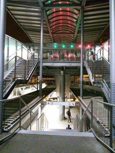 Train Station Train Platform Station Plataform Trains & Railroad Nights  Night Reflections Night Lights