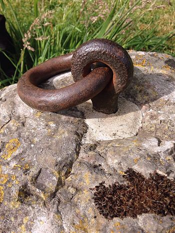 Rust Stone Iron Ring Taking Photos Lichen Strength Sunlight Close-up Chain Land Rock - Object Iron - Metal Old Solid Rusty Metal Rock Outdoors Nature No People Day