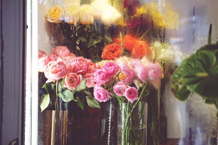 Close-up of flowers in vases seen through window