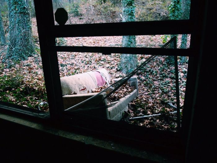 Travel Traveling Nature Vandalism Rebel Couch Abandoned House Vscocam VSCO Vscogood VSCO Cam Forest Window Lonely