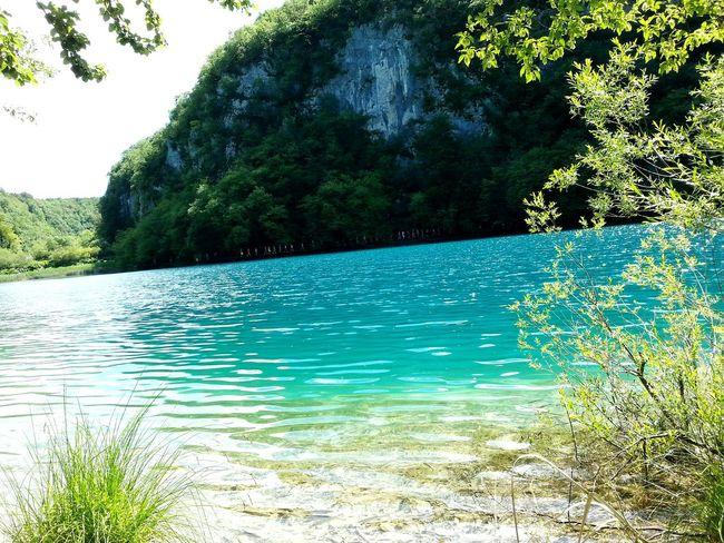 Croatia Croatia_photography Plitvice National Park Plitvickajezera Plitvice Lakes National Park Plitvicelake Beautiful Nature Beautiful Place Beautiful Colors Lake Lake View Hello World Enjoying Life