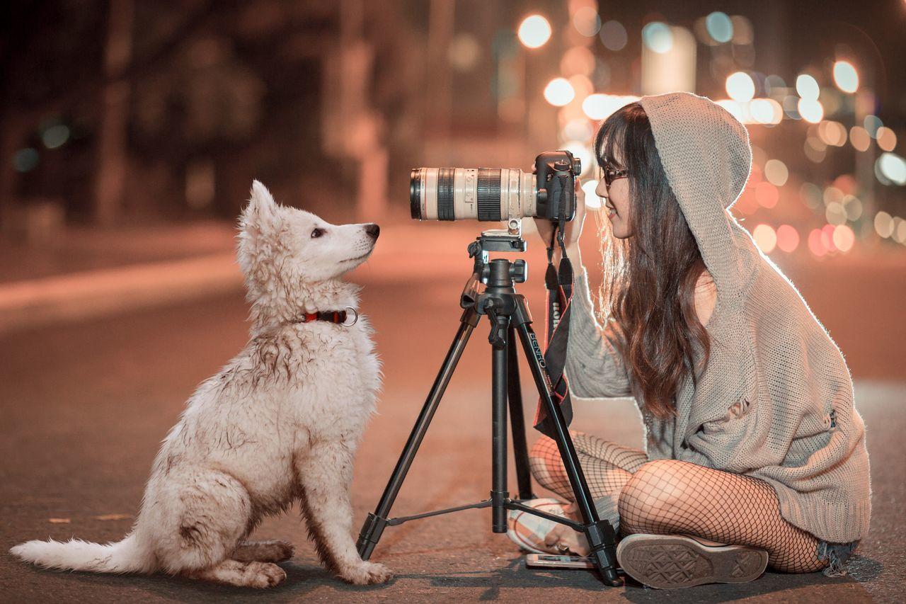 domestic, pets, domestic animals, mammal, one animal, vertebrate, technology, photography themes, canine, camera - photographic equipment, dog, photographic equipment, real people, one person, photographing, lifestyles, adult, photographer, digital camera, pet owner