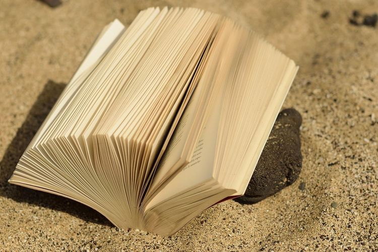 book Beach Day Education Expertise Focus On Foreground High Angle View Literature Nature Open Selective Focus Single Object Sunlight