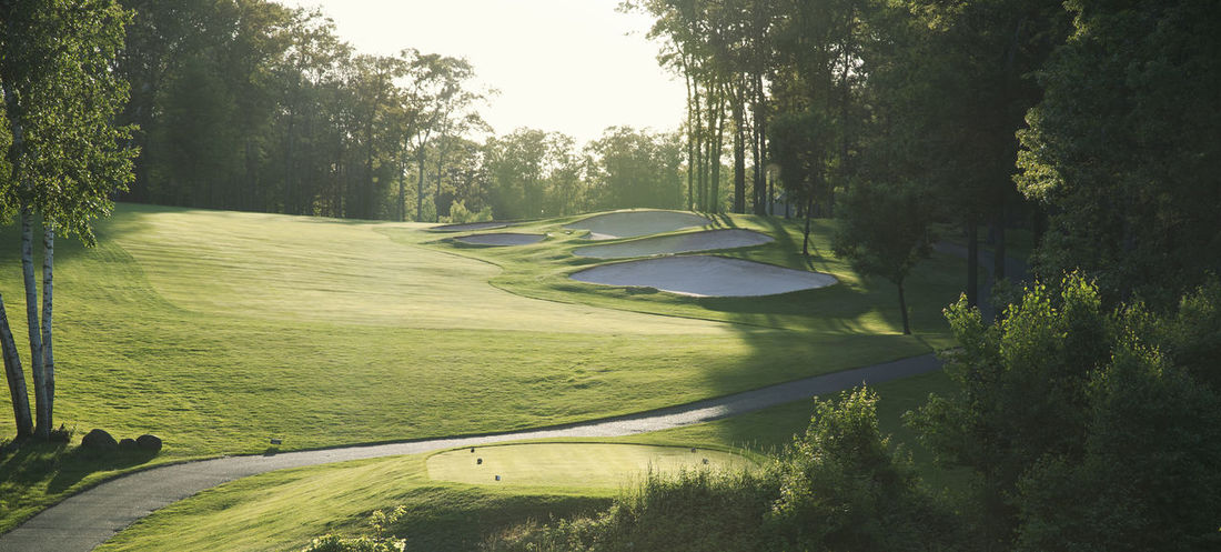 Golf fairway back lit in late afternoon sunlight Bunker Horizontal MidWest Minnesota Recreation  Sand Trap Sunlight Tree USA Back Lit Beauty Day Fairway Golf Golf Course Grass Landscape No People Sport Sports Tee Box