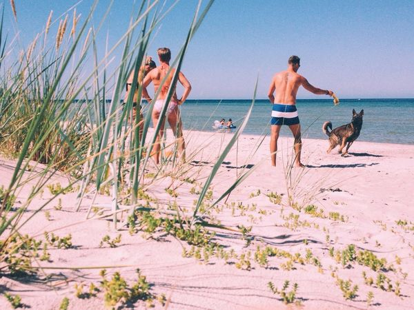 At a beach in Sweden. Who would have guessed. Beach Chillabration Dog Gotta Chill  Hanging Out