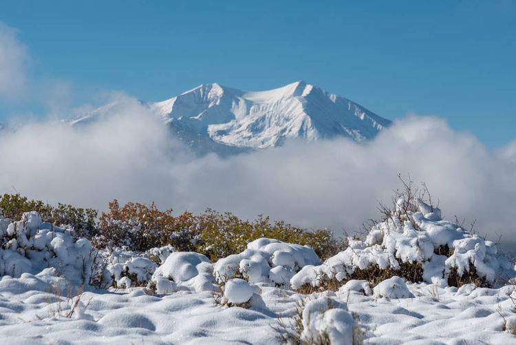 Mount Sopris Mount Sopris Beauty In Nature Blue Carbondale, Co Cloud - Sky Cold Temperature Day Landscape Mountain Mountain Range Nature No People Outdoors Scenics Sky Snow Snowcapped Mountain Tranquil Scene Tranquility White Color Winter