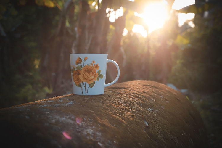 Cup Plant Nature Tree Mug Coffee Cup Lens Flare No People Close-up Food And Drink Day Selective Focus Table Drink Sunlight Still Life Refreshment Coffee Outdoors Coffee - Drink Crockery