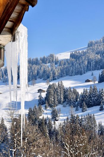 Cold as ice Holiday Skiing Gstaad Switzerland Winter Snow Cold Temperature Nature White Color Beauty In Nature Remote No People Tranquility Landscape Frozen Clear Sky Blue Day Outdoors