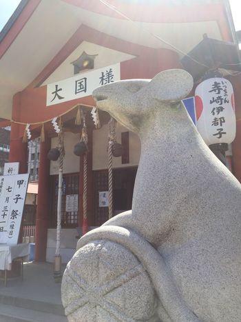 #大黒様 #光 #ねずみ #お金 #まぶしい #晴天 #沖縄 #大阪 Cute Happy God Temple Rabbit Light Japan Communication Text One Person Script Non-western Script Western Script Clothing