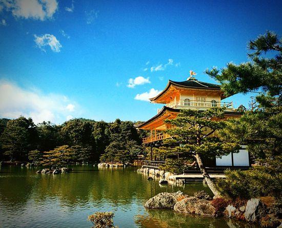 金閣寺 鹿苑寺 京都 Kyoto 寺社仏閣 庭園 Relaxing