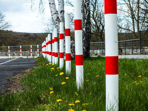 Barriers in a row Architectural Column Barrier Barriers Barriers In A Row Blockade Day Grass In A Row Nature No People Outdoors Pylon Pylons Red Red And White Signal Stop Warning White