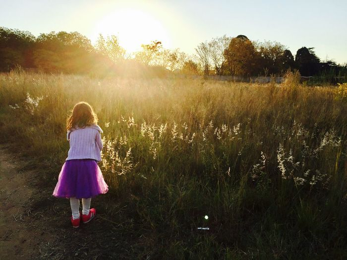 Rear View Full Length Of Girl Standing By Grassy Field During Sunset