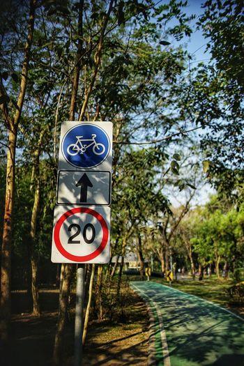No People No Person Day Bike Lane Bike Lane Sign Bike Life Tree Speed Limit Sign Communication Road Sign Road Sky Pedestrian Sign Information Sign Warning Sign Information Signboard