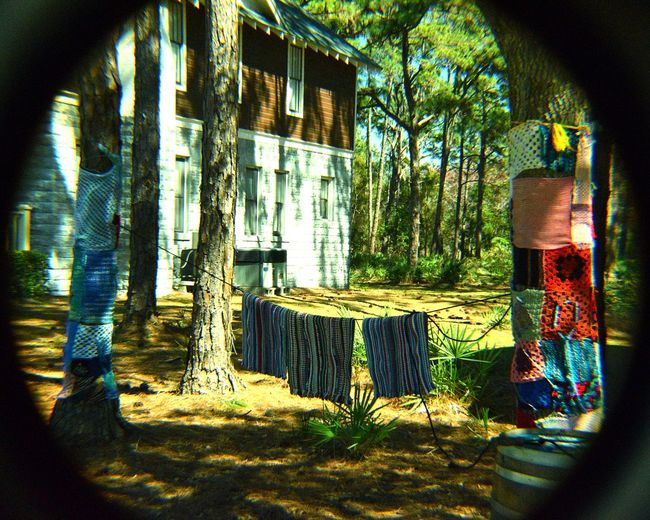 Window Architecture Building Exterior Day Summer Outdoors No People Tree Freshness EyeEm Selects Crochet Yarn Yarn Bombing Yarn Bomb