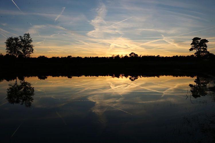 Sunset pond II
