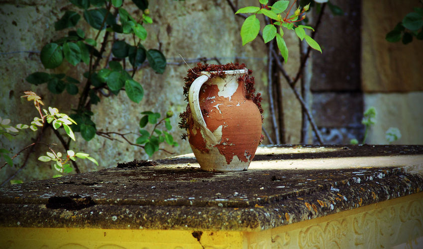 Brown Close-up Day Growth Jug Nature No People Outdoors Rustic Table