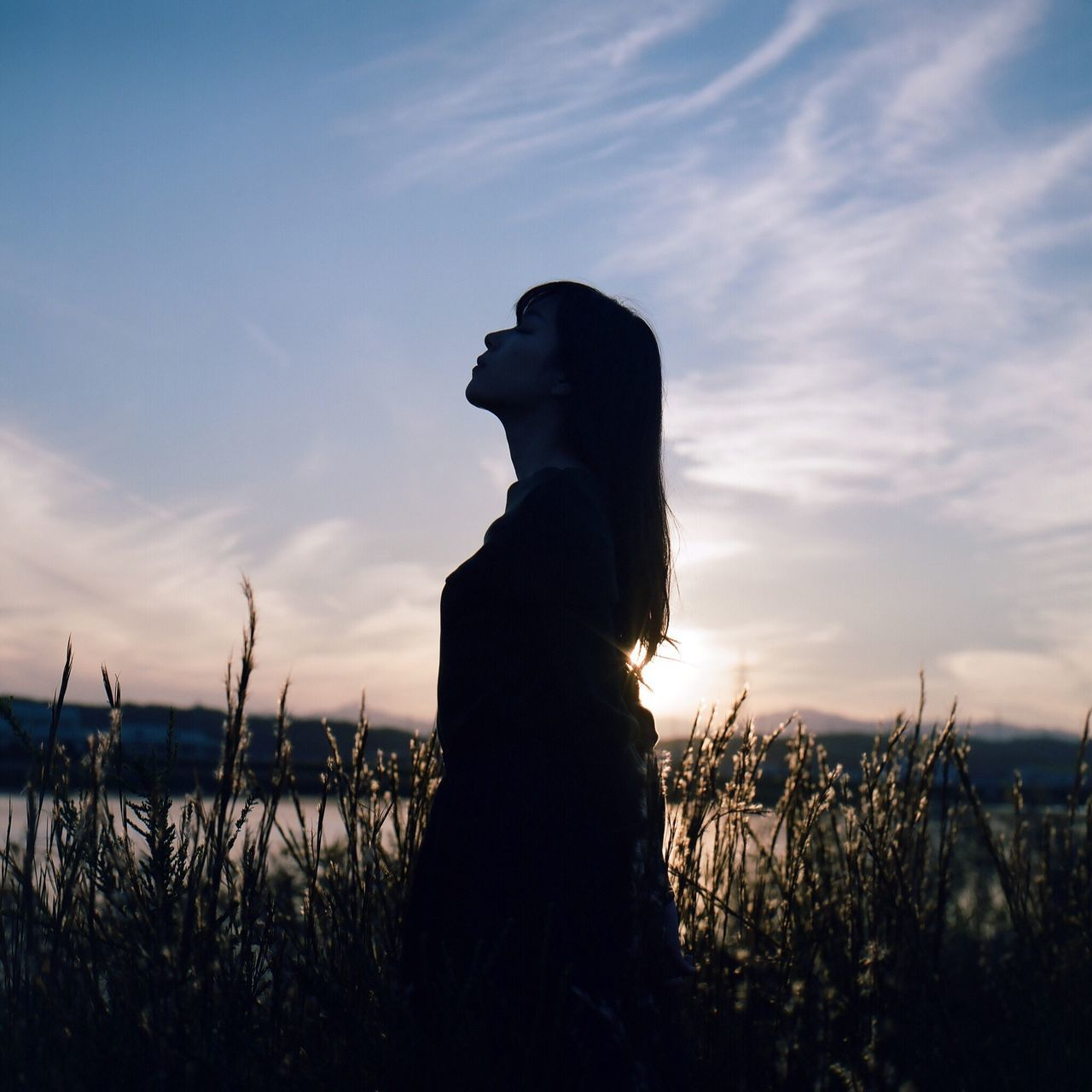 sunset, sky, silhouette, nature, field, cloud - sky, beauty in nature, outdoors, tranquility, growth, plant, tranquil scene, one person, scenics, flower, day, people