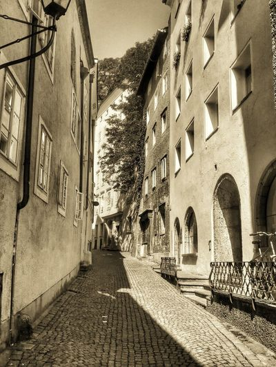 Architecture City Life Historic Salzburg Salzburg Oldtown Sepia Steingasse Street B&w Street Photography Tree Poison Ivy Light And Shadow Sunny Day