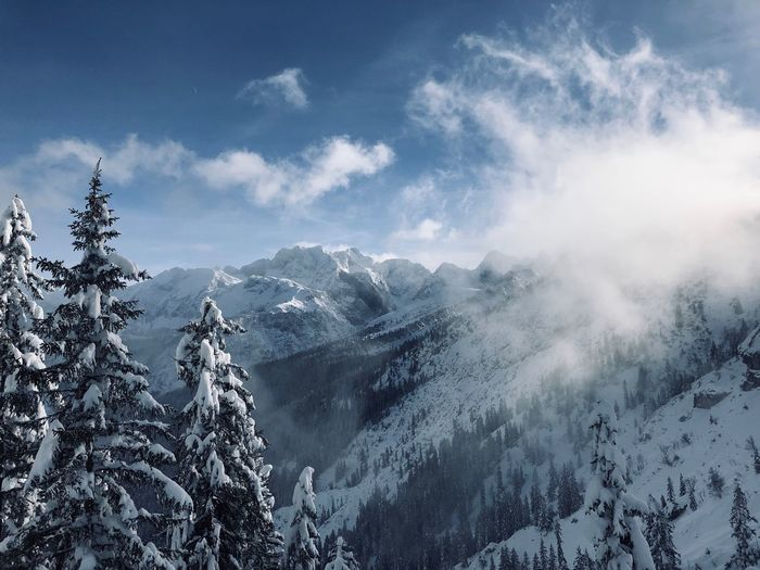 Tree Cloud - Sky Sky Beauty In Nature Winter Plant Snow Scenics - Nature Cold Temperature Nature Mountain Non-urban Scene No People Mountain Range Snowcapped Mountain Outdoors Tranquil Scene