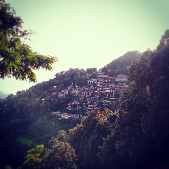 Small little peaceful Town Dalhousie in the Himalayan Hills Himachal India Indiapictures Incredibleindia Indiatraveller Nature Mountains Greenery Trees Huts Houses City Greenfields Trees