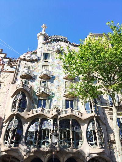 Barcelona, Spain Casa Batllo Built Structure Building Exterior Architecture Sky Tree Plant Building
