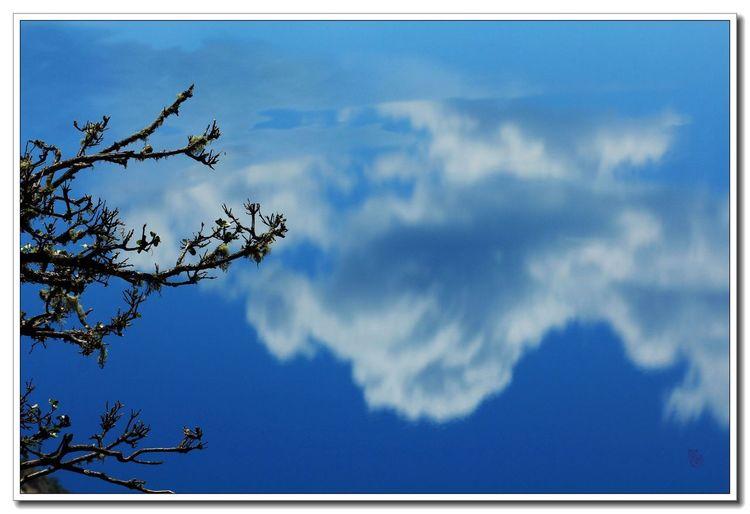 Sky In Water