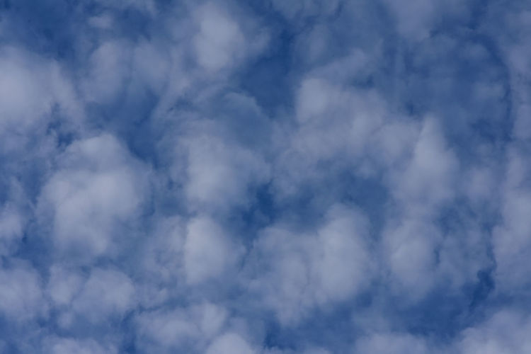 Fluffy Clouds Cloudscape Nature Skyward View Textured Effect Weather White Clouds Backgrounds Beauty In Nature Blue Sky Clouds Cumulus Cloud Day Daylight Fluffy Clouds Full Frame Looking Up Meteorology Mothernature No People Outdoors Scenics - Nature Sky Tranquility Wallpaper