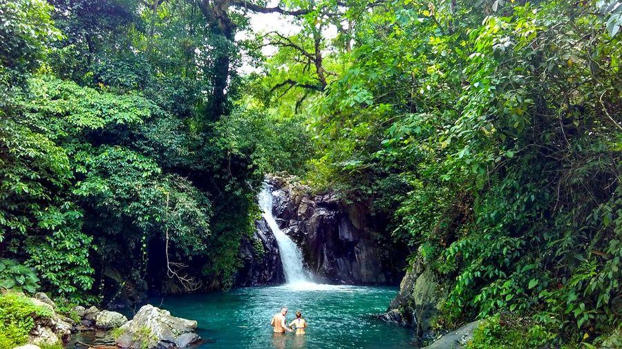 Wake up in Bali be like Relaxing Landscape #Nature #photography Islandlife First Eyeem Photo HEAVENONEARTH Secret Garden Travel Explorebali Waterfall Bali, Indonesia