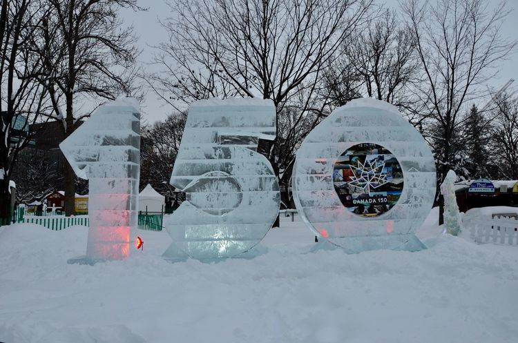 Celebrating Canada 150 Bare Tree Canada 150 Canada Winterlude Close-up Cold Temperature Confederation Park Day Ice Rink Ice Sculpture Nature No People Ottawa, Canada Outdoors Sky Snow Snowboarding Snowing Winter Winterlude