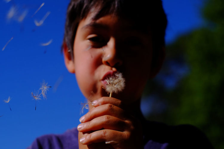 Boy blowing on a dandelion flower over blue sky Boys California Childhood Close-up Dandelion Day Dreaming Focus On Foreground Headshot Human Hand Leisure Activity Lifestyles Nature One Person Outdoors People Plant Real People Sky Sonoma County Taylor Mountain Regional Park USA Wishes Breathing Space Investing In Quality Of Life