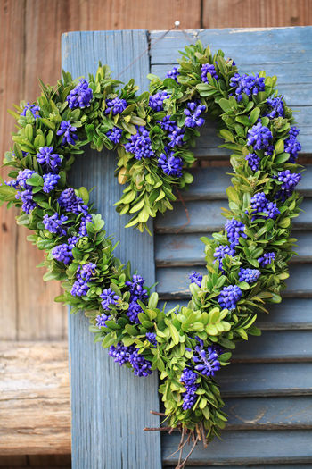 Purple Flowers On Blue Door