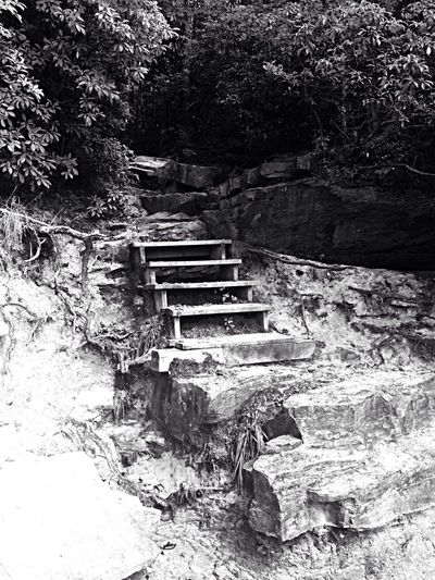 Fall Creek Falls in Tennessee Black And White