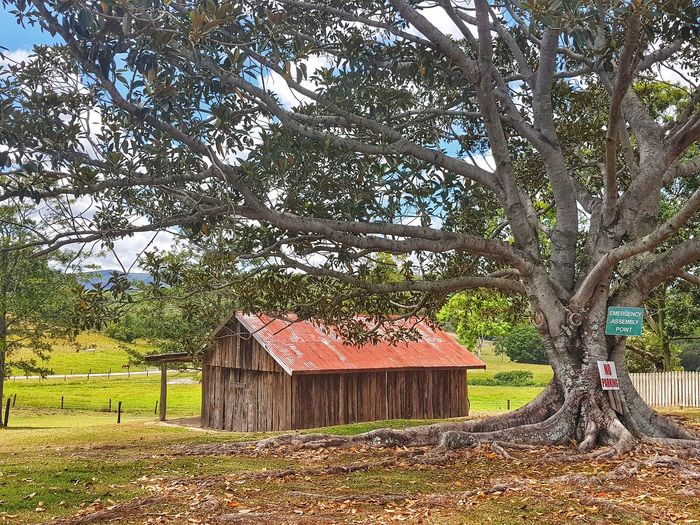 Red Shed Countryside Hayshed Tree Tree Trunk Farmland Tree Roof Architecture Built Structure Sky Shelter Thatched Roof Country House