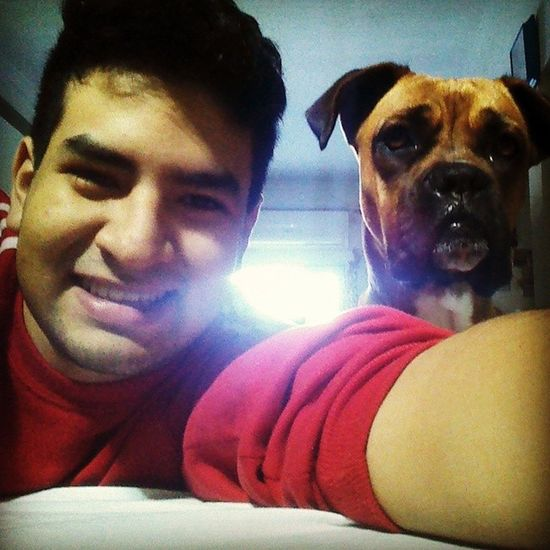 Selfie Selfiedog Dog Puppy bitch boxeroninstagram boxerdog boxer instaphoto instamoment happy