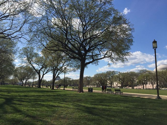 Beautiful Day Blue Sky Blue Sky And Clouds Day Downtowndc EyeEm Best Shots EyeEm Nature Lover Golf Golf Course Grass Green Color Lamp Lush - Description Mycity Nature No People Outdoors Sky Tourism Tourist Attraction  Tree Washinton D.C Washinton Monument Perspectives On Nature