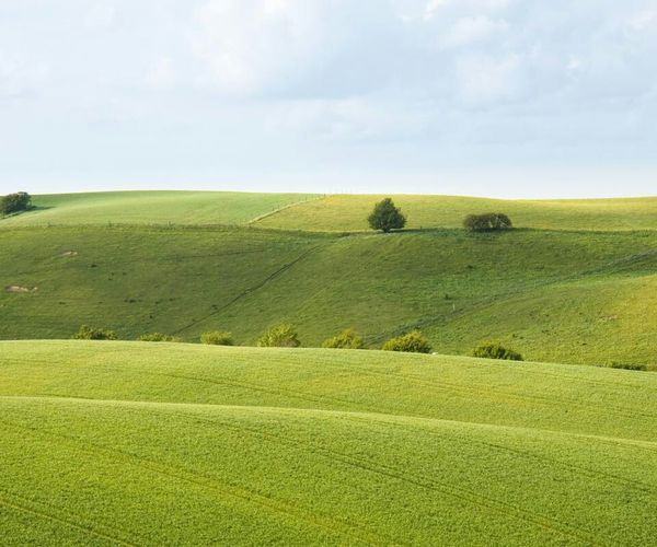 Green Hills Landscapes Nature On Your Doorstep Wild In The Hills